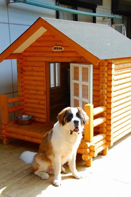 ログペットハウス 1550型 (ベランダ付) 柴犬 ゴールデンレトリバー ラブラドールレトリバー 犬小屋 屋外 大型犬 中型犬 小型犬 犬舎