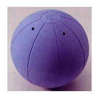 ゴールボール競技用ボール F1620【送料無料】【smtb-k】【ky】