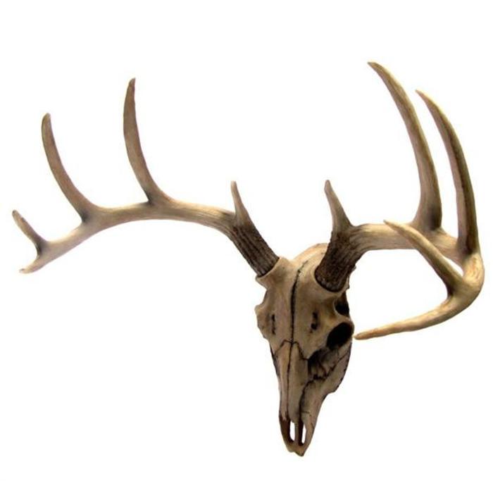 雄鹿(トナカイ・アンテロ-ブ) 頭骨 枝角 ハンティングトロフィー 彫刻 彫像/ Buck Head Wall Mount Resin Deer Skull(輸入品