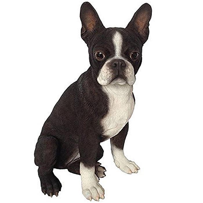 ボストンテリア(Boston Terrier) 犬の置物・オブジェ 彫像(輸入品