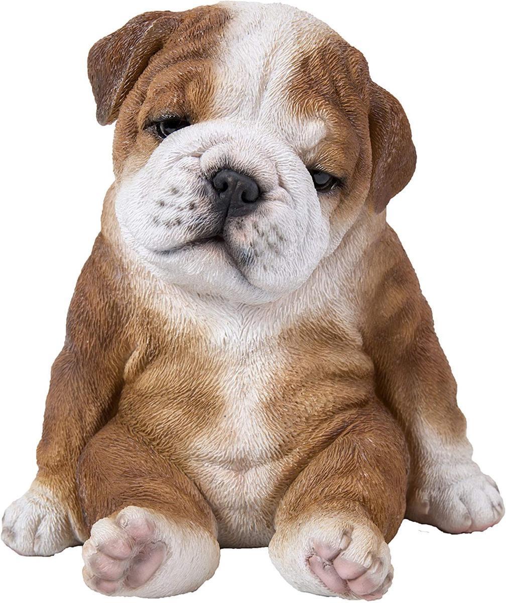 かわいい!座って眠そうな、ブルドッグ子犬 彫像 彫刻/ Sitting Sleepy Bulldog Puppy(輸入品