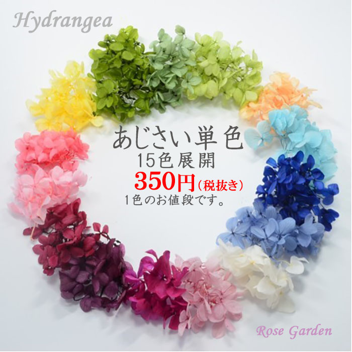 ハーバリウム花材 ボタニカルキャンドル リース 売却 プリザーブドフラワードライフラワー花材 クリックポスト対応 あじさい単色 プリザーブドフラワー 新色登場 15色展開 出色
