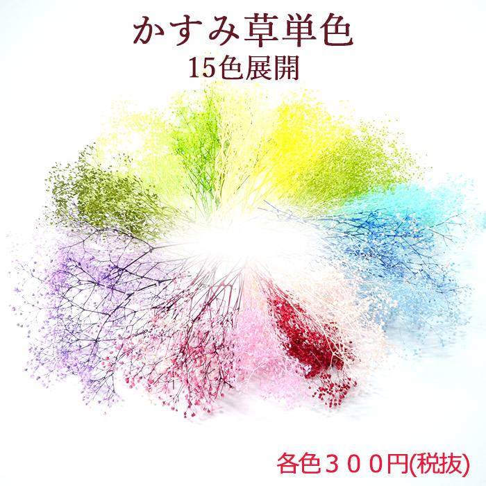 ハーバリウム花材 ボタニカルキャンドル リース プリザーブドフラワードライフラワー花材 即納最大半額 15色展開 かすみ草単色 クリックポスト対応 高品質 プリザーブドフラワー