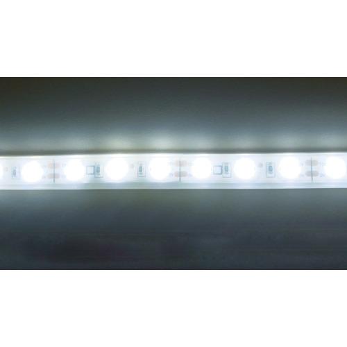 【TP50333PN】トライト LEDテープライト 33mmP    5000K  3M巻(1巻)