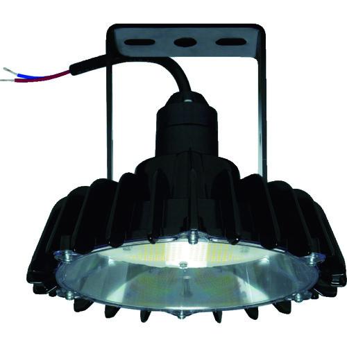 【WCBME11AMNC1】日立 高天井用LEDランプ アームタイプ 特殊環境対応 防湿・防雨形(耐衝撃形)(1台)