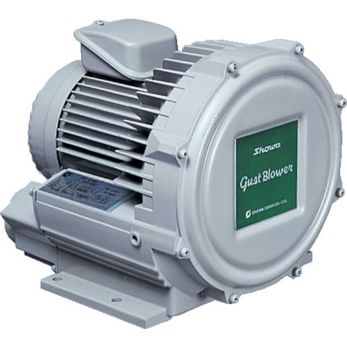 【U2V10T】昭和 電動送風機 渦流式高圧シリーズ ガストブロアシリーズ(0.1kW)(1台)