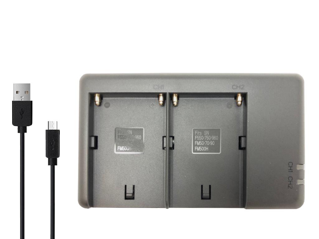 メール便送料無料 ロワジャパン 純正・互換バッテリー共に対応可能 【2個同時充電可能】ソニー対応 AC-VQ1051D 互換 USB Type-C 充電器