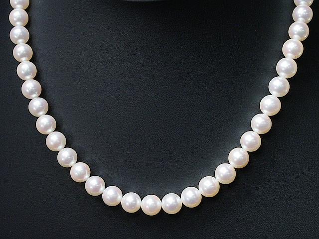 輝き最強オーロラ花珠アコヤパールネックレス厳選あこや本真珠ネックレス 格安 価格でご提供いたします SVクラスプ 8.0-8.5mm真珠科学研究所パールマーク 2020春夏新作 送料無料 ロイヤルブルー