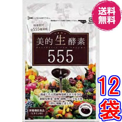 【送料無料】美的生酵素555 ×超お得12袋 《60カプセル、ダイジェザイム サプリメント 、特選素材555種、酵素女神555、酵素ダイエット、マイクロ、酵素女神 生酵素555》