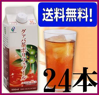 【送料無料】グァバ茶ポリフェノール500ml×超お得24本セット【代引き料無料】《飲みやすい、簡単、ダイエット、糖、加齢臭、シミ・くすみ》