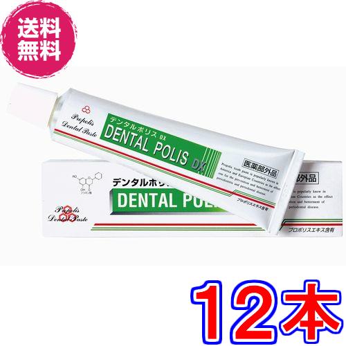 【送料無料】デンタルポリス DX ×超お得12本《80g、医薬部外品、歯肉炎・歯槽膿漏・口臭を予防》