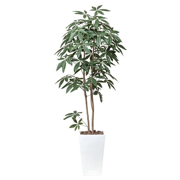 【送料無料】《アートグリーン》《人工観葉植物》光触媒 光の楽園 アートパキラ1.8