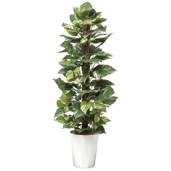 【送料無料】《アートグリーン》《人工観葉植物》光触媒 光の楽園 ポトス1.35