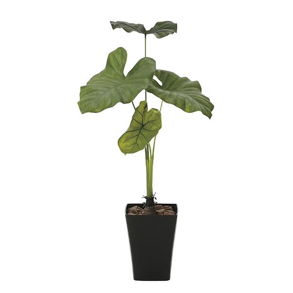 【送料無料】《アートグリーン》《人工観葉植物》光触媒 光の楽園 タロリーフ90