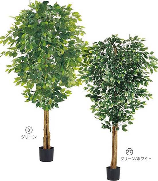 人口観葉植物 大型 180cm フィカスツリー(ナチュラルトランク) 造花 観葉植物 [LETR7634] フェイク グリーン インテリア おしゃれ