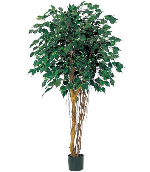 150cm フィカスツリー(ナチュラルトランク) 造花 フラワー 観葉植物 [LETR7475]【フェイク グリーン インテリア 人口観葉植物】