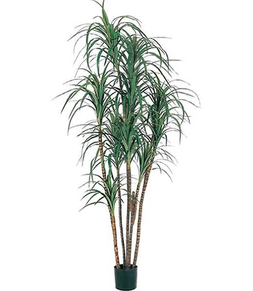 200cm ドラセナツリー(ナチュラルトランク) 造花 フラワー 観葉植物 [LETR7570]【フェイク グリーン インテリア 人口観葉植物】