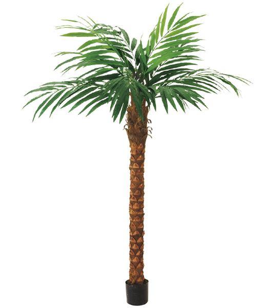 240cm ココナッツツリー 造花 フラワー 観葉植物 [LETR7649]【フェイク グリーン 資材 フラワー アレンジメント】