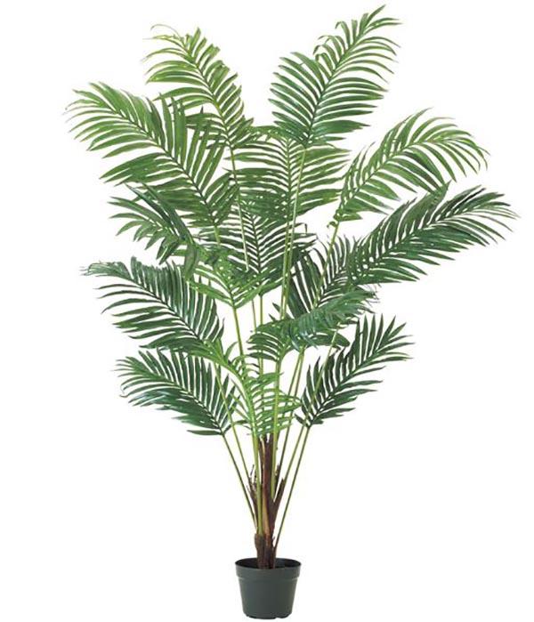 210cm ニューアレカパームツリー 造花 フラワー 観葉植物 [LETR7654]【フェイク グリーン 資材 フラワー アレンジメント】 代引決済不可