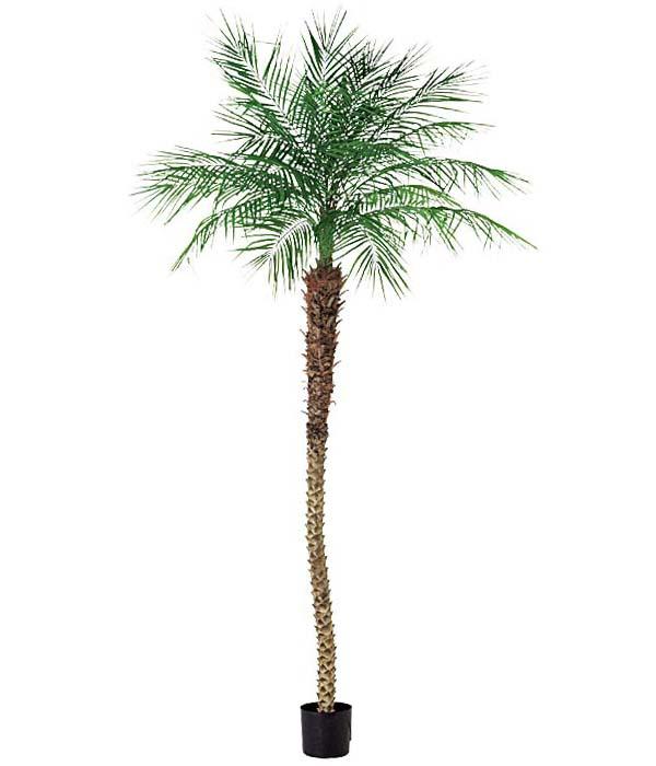240cm フェニックスパームツリー 造花 フラワー 観葉植物 [LETR7651]【フェイク グリーン 資材 フラワー アレンジメント】