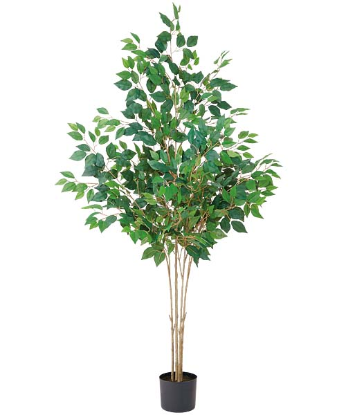 180cmフィカスツリー(714) 造花 フラワー 観葉植物 [LETR7678]【フェイク グリーン インテリア 人口観葉植物】