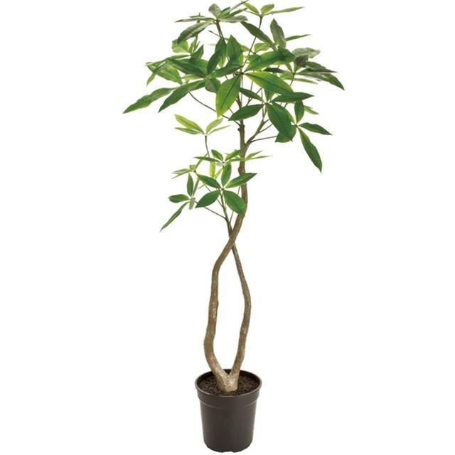 造花 観葉樹木 季節の飾り パキラ 4F GREEN 送料無料でお届けします 代引決済不可 T-FG022000 完全送料無料 インテリアグリーン