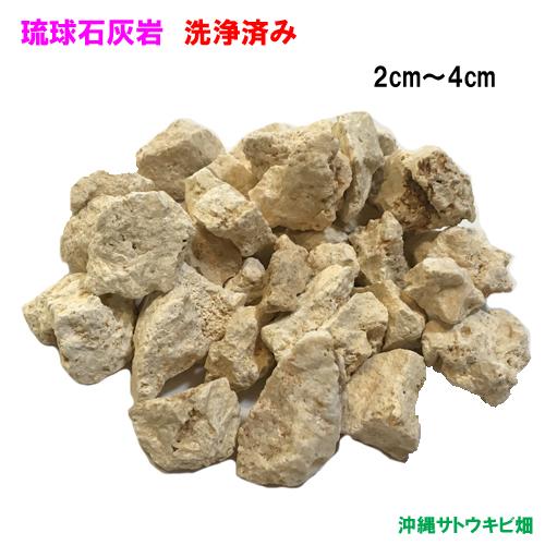 琉球石灰岩 メーカー公式ショップ 洗浄済み 新作通販 小粒タイプ 2cm~4cm 300g