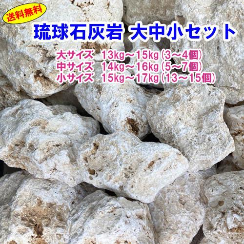 送料無料 ついに入荷 百貨店 N 琉球石灰岩 大中小セット 10000円ポッキリ 洗浄済