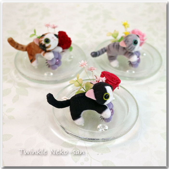 Wedding Gifts Next Day Delivery: S-arrange: Points 10 Times Preserved Stuffed Cat Glass