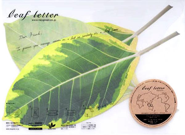 NEO GREEN / leaf letter Ficus altissima leaf letter