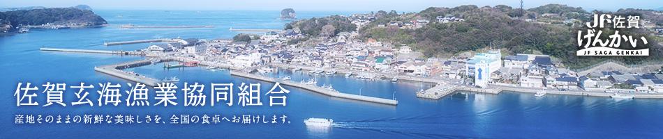 佐賀玄海漁業協同組合:玄海の恵まれた漁場から、安心出来る海の幸を提供いたします。