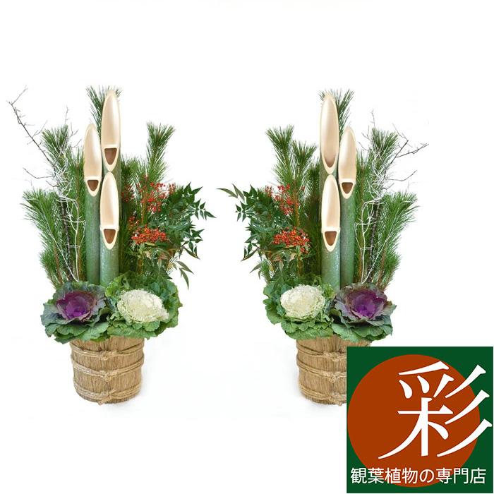 観葉植物 2台 通販/お正月飾り 【門松】【お正月飾り】販売 生花 迎春門松 玄関 高さ約1.2m 1対 一対