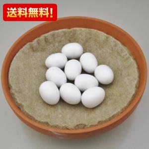 送料無料 メール便限定 偽卵 10個 お勧め オススメ 鳩用 保証 新作 人気 おすすめ