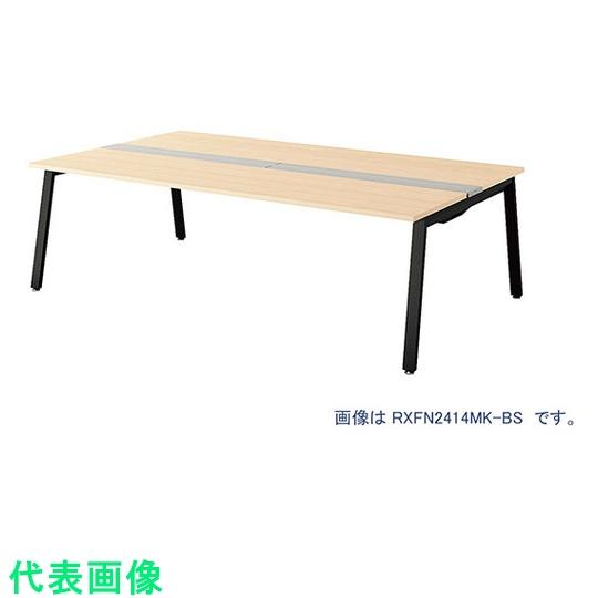 ナイキ 大型ベンチテーブル (基本型) (両面タイプ) 〔品番:RXFN1612K-BS〕[2086771]「送料別途見積り,法人・事業所限定,直送」