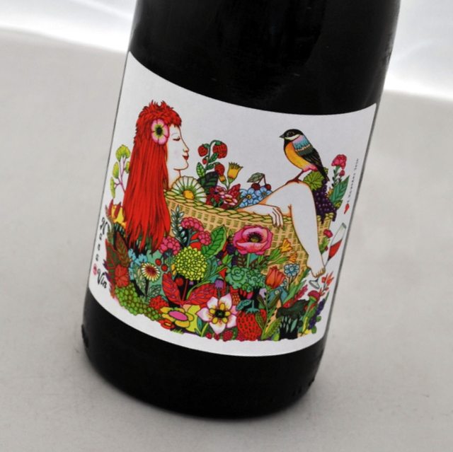 コンジョー 2019 ナナ 豊富な品 ヴァン赤ワイン 高価値 フランスVdF Konjonana vins ラングドック