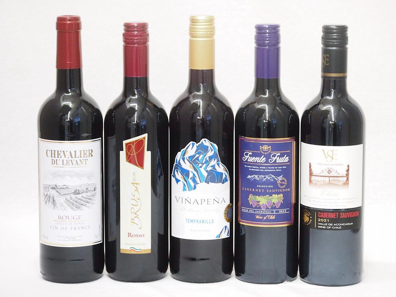 ワインセット 赤ワイン 5本( スペインワイン 1本 フランスワイン 1本 イタリアワイン 1本 チリワイン 2本)計750ml×5本