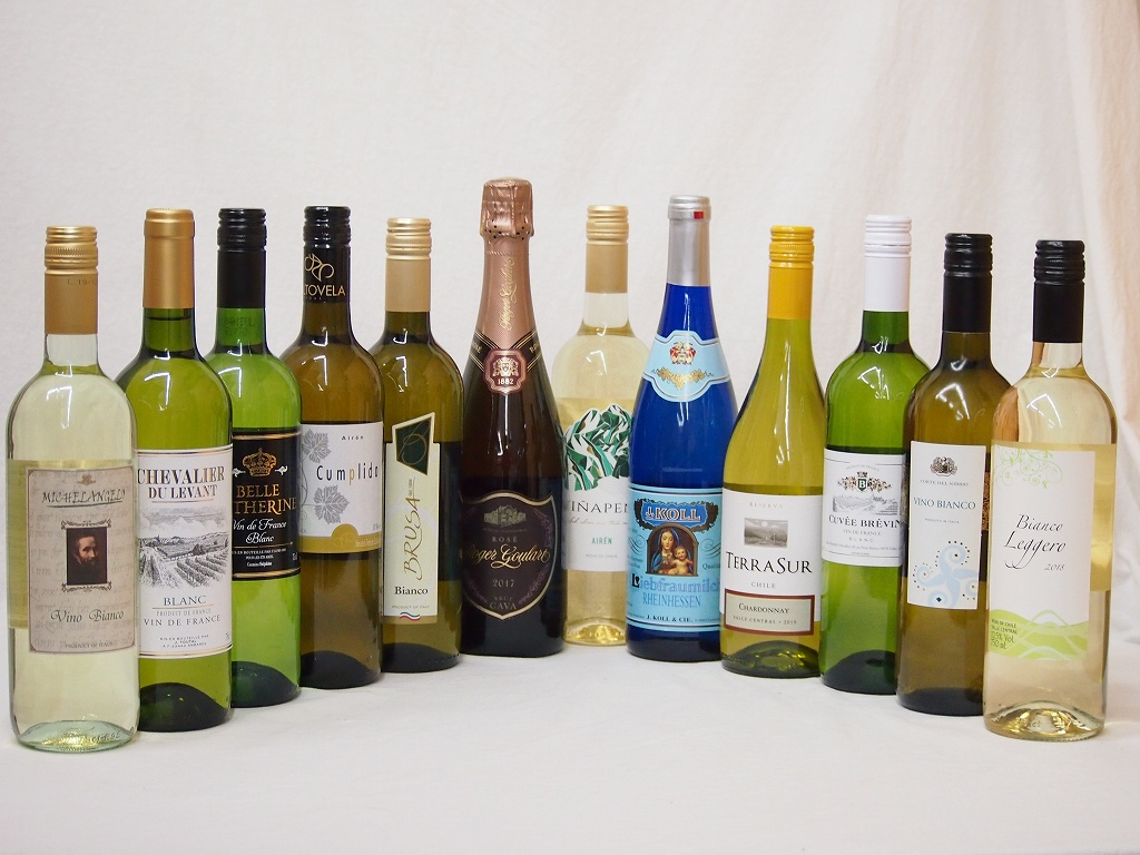 【全品P5倍★11日1:59迄】【特選】ドンペリに勝った噂のロジャー グラート +高品質ワイン11本福袋(白11本)豪華セット 750ml×12本