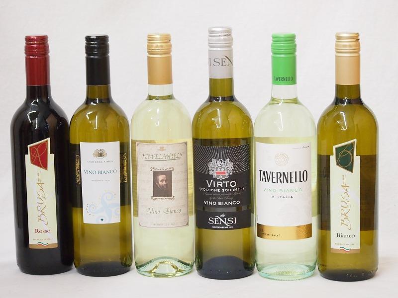 贈り物ギフトセット包装 熨斗 メッセージカード無料 高品質イタリアワイン(赤1本、白5本)750ml×6本