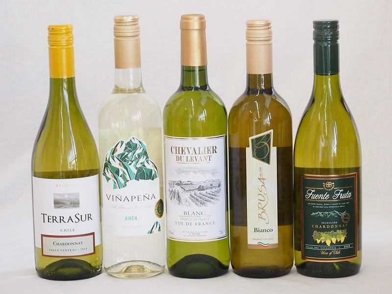 4セット セレクション 白ワイン 5本×4セット ( スペインワイン 1本 フランスワイン 1本 イタリアワイン 1本 チリワイン 2本)計750ml×20本