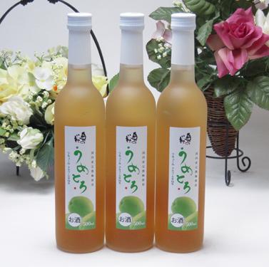 12本セット 完熟梅の味わいと日本酒のうまみをたっぷりの梅リキュール うめとろ500ml×12本 13%奥の松酒造(福島県)