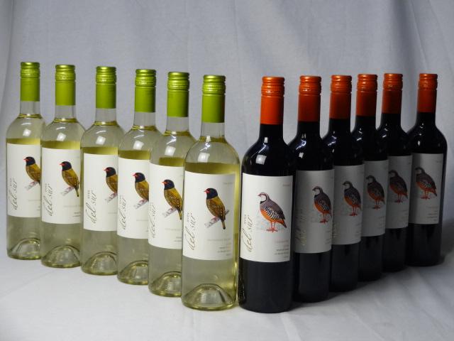 チリ白赤ワイン12本セット デル・スール カルメネール ミディアムボディ6本 デルスール ソーヴィニヨン ブラン 辛口6本 750ml×12本