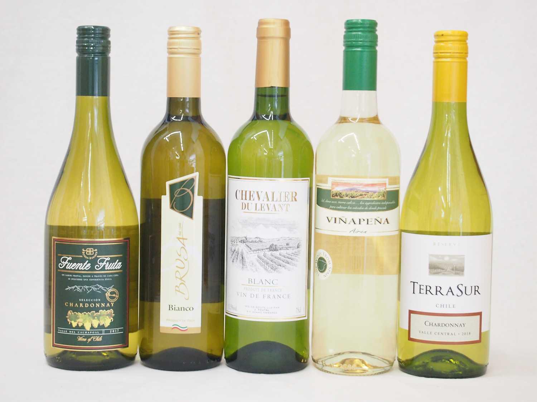 4セットセレクション 白ワイン 5本セット( スペインワイン 1本 フランスワイン 1本 イタリアワイン 1本 チリワイン 2本)計750ml×20本