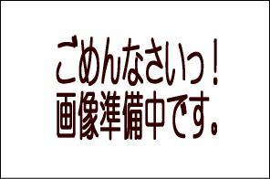 【振込・代引き決済限定】★送料無料★(一部地域除く)ドン ペリニヨン 白 [2009] 箱付き 正規品 泡・白 750ml