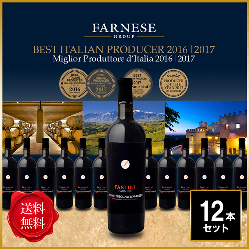 Book a wine tour in Italy, check out our offers