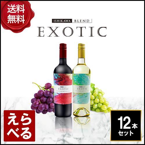 エキゾチックワイン 選べる 12本セット