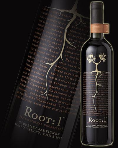Routine Cabernet Sauvignon (Yon) 750 ml