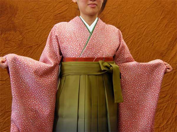 レンタルきもの ピンク・梅小花2尺袖