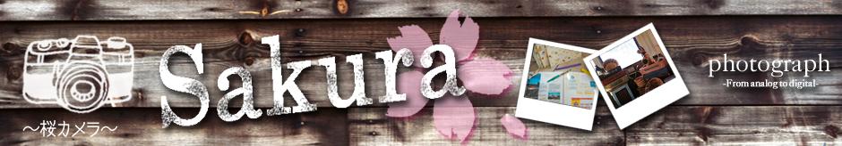桜カメラ:写真・現像・フィルムデータ画像データ化・カメラ雑貨