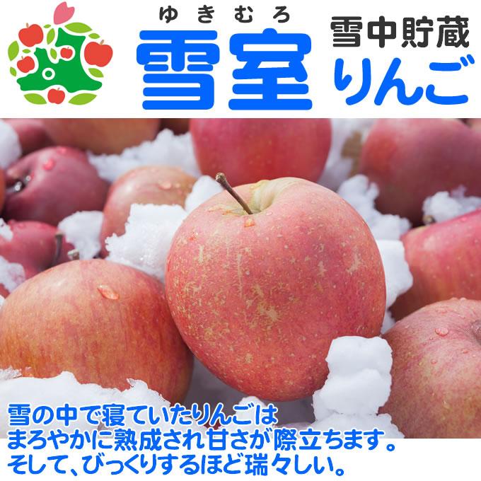 雪室りんご サンふじ 特選中玉 青森県産 ギフト 贈答用 10kg
