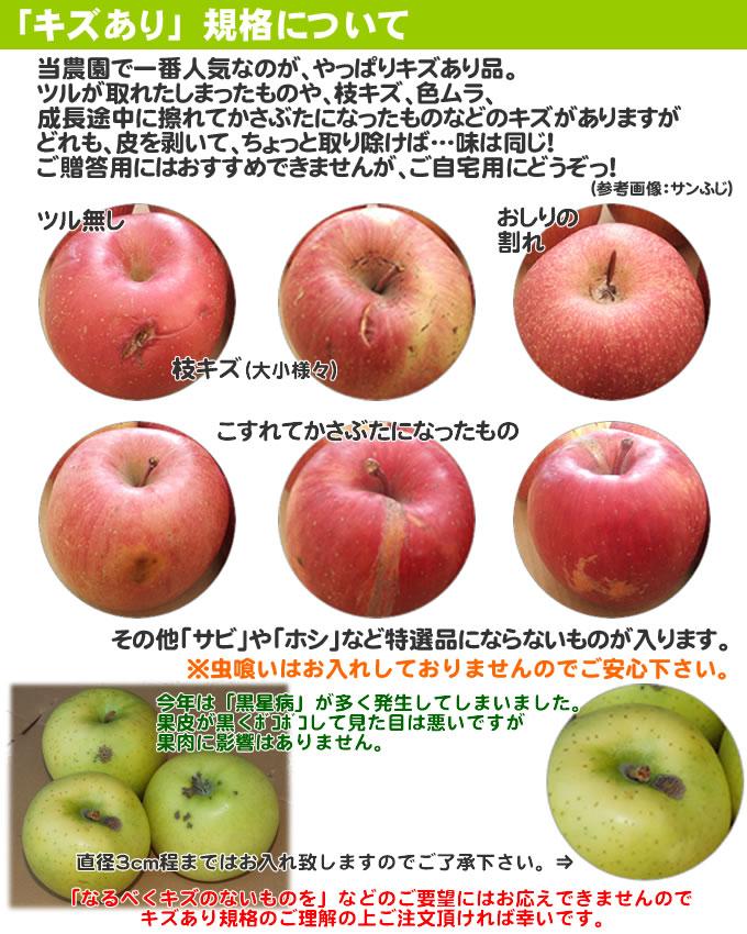 りんご 5kg 訳あり 青森 りんご 訳あり 5kg リンゴ 林檎 青森 【10月下旬収穫】シナノゴールド家庭用キズあり5kg 【CA貯蔵】